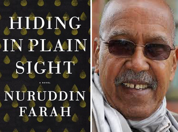 Hiding in Plain Sight by Nurrudin Farah